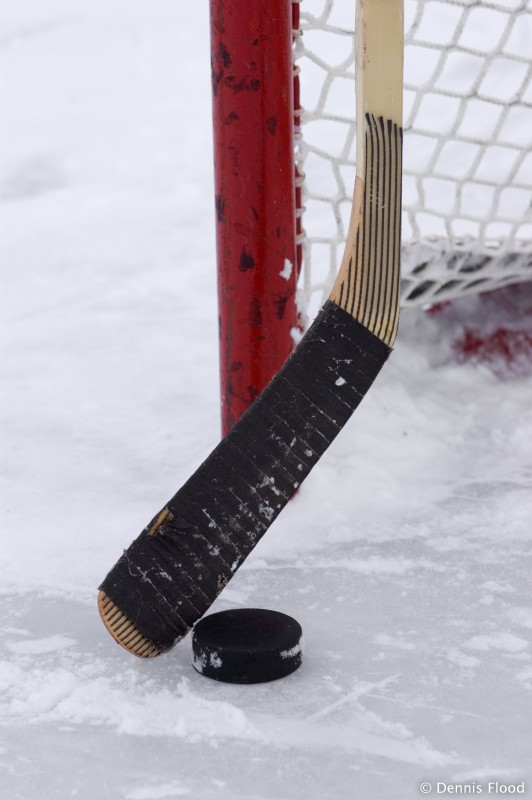 hockey_stick_puck_and_net_2438